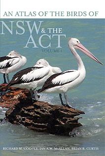 nsw-ba-vol1-cover